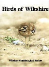 Birds of Wiltshire