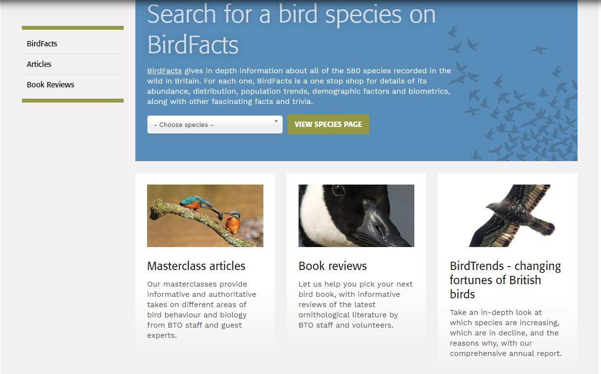 Revised website - Understanding birds page