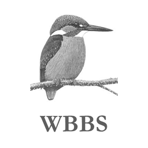 wbbs logo